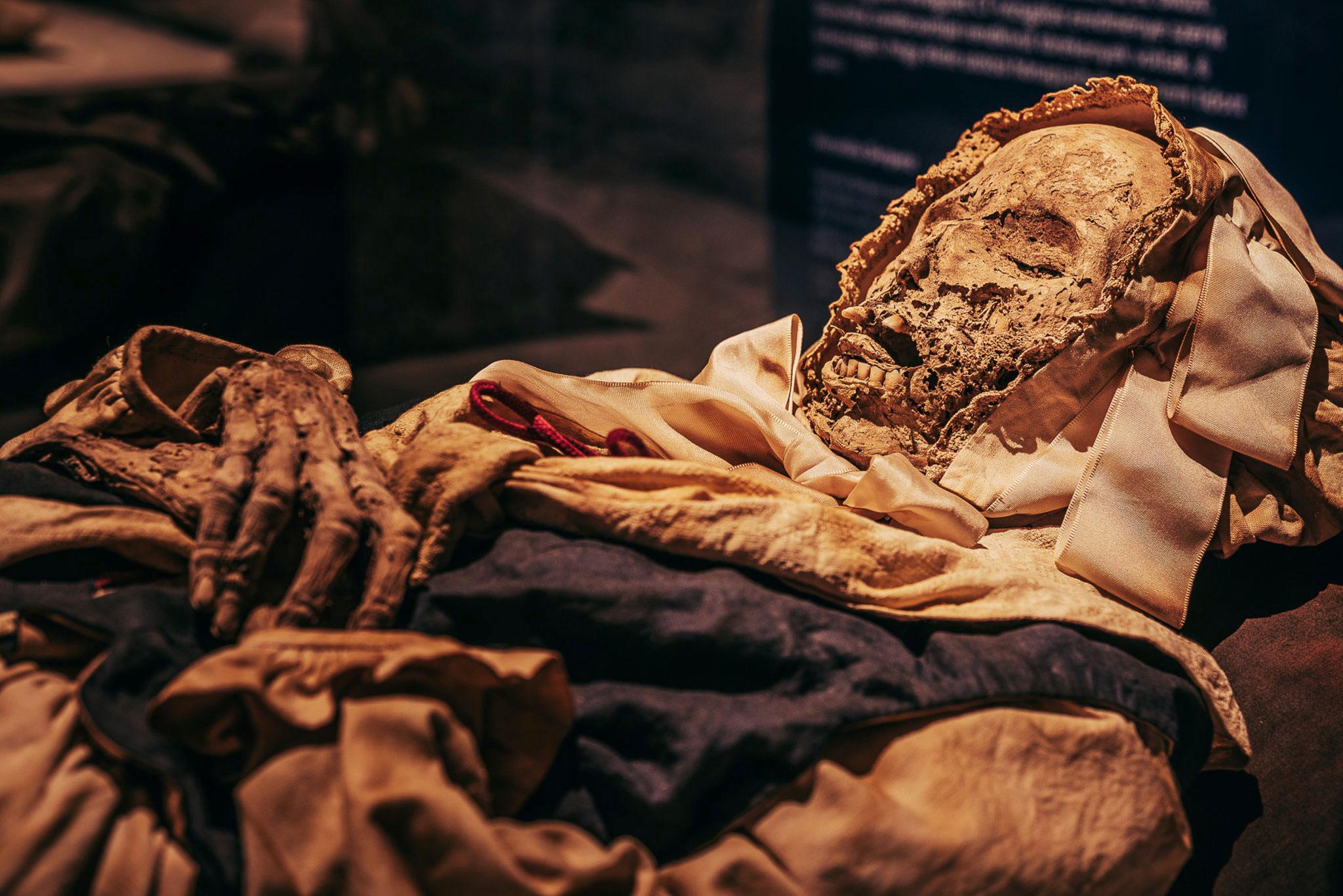 visszeres múmia lehet