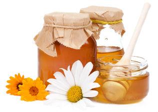 méz és visszér