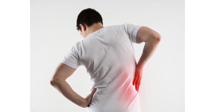 a gerinc és a visszér görbülete
