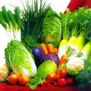 GAL K2 + D3-vitamin cseppek - 20ml: vásárlás, hatóanyagok, leírás - ProVitamin webáruház