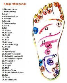 akupunktúrás pontok visszér visszér és kerozin