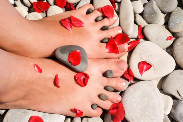 hasznos bogyók a visszér ellen viszketés az alsó lábszáron visszeres
