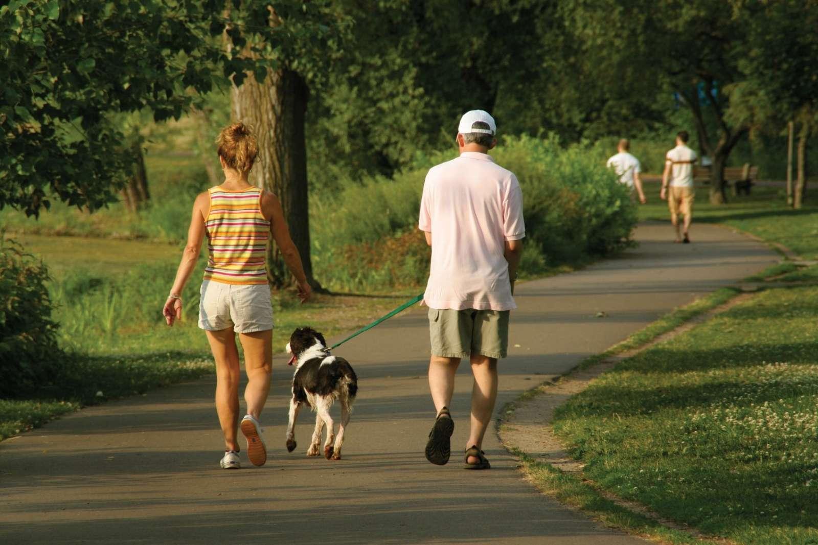 séta az egészségért, ha visszér)